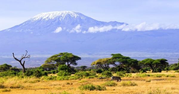 One-Million-Thumbprints-Kilimanjaro